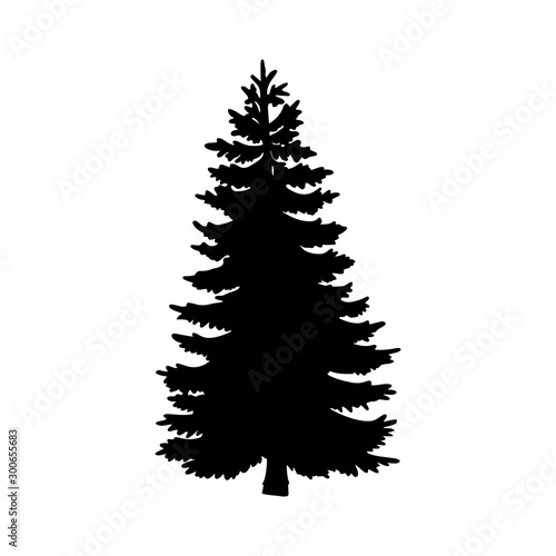 Fotografie, Tablou  Isolated tree on the white background