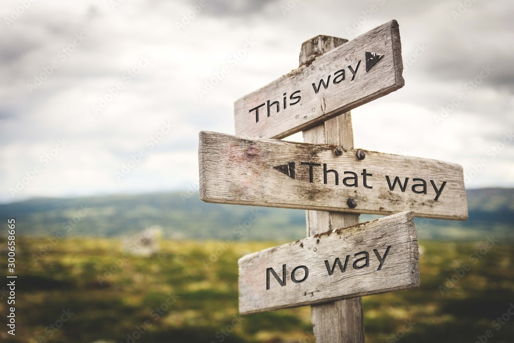Fototapeta This way, that way, no way sign board. Nature, adventure, message, text, quote concept.