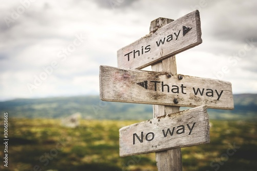 Fototapeta This way, that way, no way sign board. Nature, adventure, message, text, quote concept. obraz