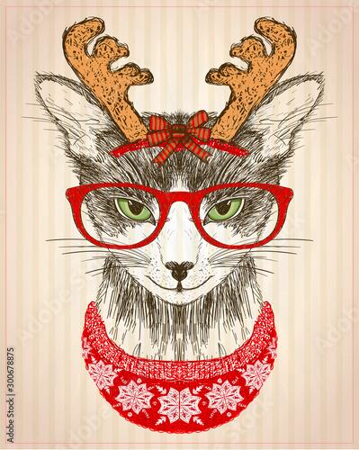 z-kotem-hipster-ubranym-w-czerwone-okulary-kapelusz-z-rogami-jelenia-i-czerwony-sweter-z-dzianiny