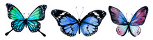 Butterfly Watercolor, Clipart ...
