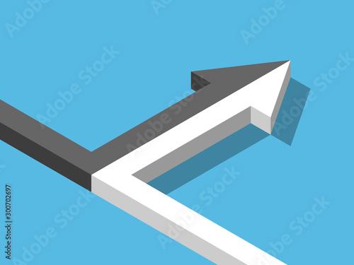 Obraz na plátně Isometric black, white merging