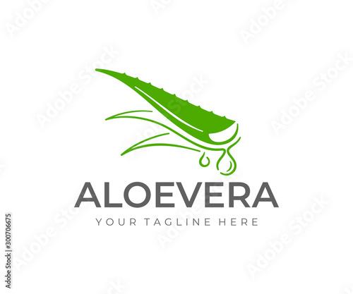Canvastavla Aloe vera plant logo design