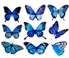 Set Of Blue Butterflies