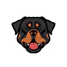 Rottweiler Dog - Vector Illust...