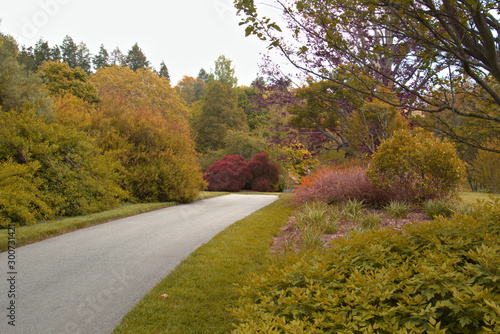 Colorful landscape extends beyond the waling path