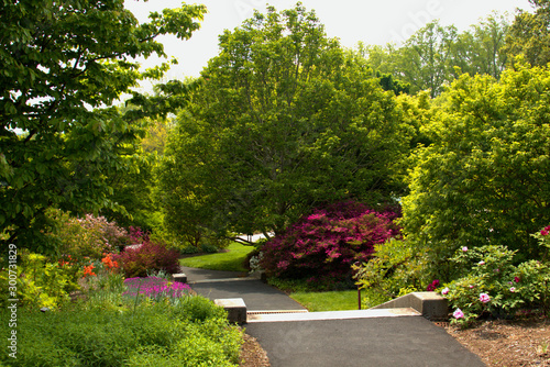 Bright green landscape captures your eye