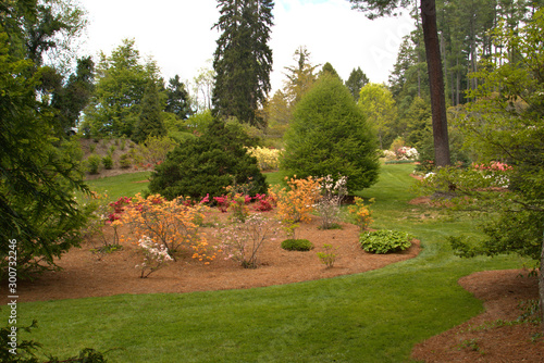 Well landscaped yard with trees and shrubs