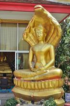 Statue Semi-divine Deities Nag...
