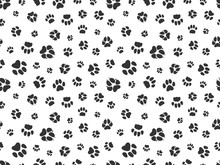 Pet Paw Pattern. Animal Background With God Cat Paws. Pet Steps Seamless Texture. Seamless Footstep Pattern, Pet Paw, Animal Dog And Cat Illustration