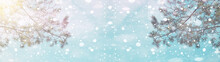 Pine Snowflakes On Blue Sky – Winter Bokeh Snowy Background Panorama Banner Long