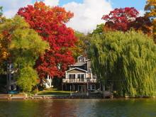 Fall Tree Colors Around The Lake