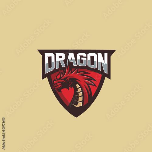 dragon logo design icon emblem Canvas Print