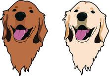 Golden Retriever Dog In Two Di...