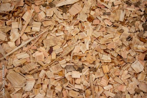 woodchip,  ウッドチップ Slika na platnu