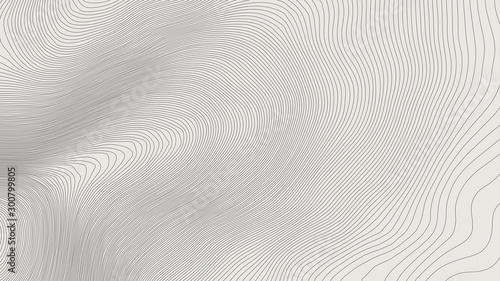 The stylized height of the topographic contour in lines and contours Wallpaper Mural
