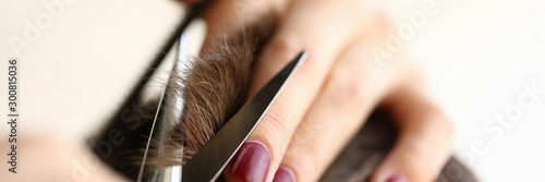 Obraz Female Hands Cutting Brown Hair with Scissors - fototapety do salonu