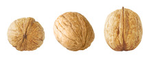 Walnut Collection. Set Of Whol...