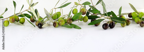 Valokuvatapetti Foglie fresche delle olive verdi isolate su fondo bianco