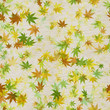 canvas print picture - Autumn leaves seamless background
