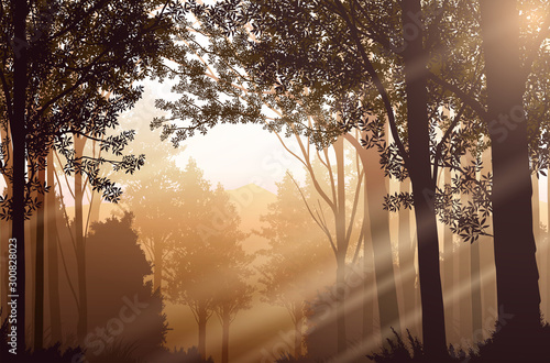 Foto auf Leinwand Dunkelbraun Light from a natural forest Jungle green mountains horizon trees Landscape wallpaper Sunrise and sunset Illustration vector style Colorful view background