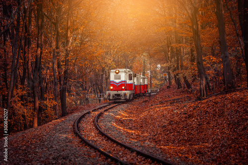 Red and white diesel train coming in the autumn forest in Budapest, beautiful sunshine colors and fallen leaves in the background. Retro style image