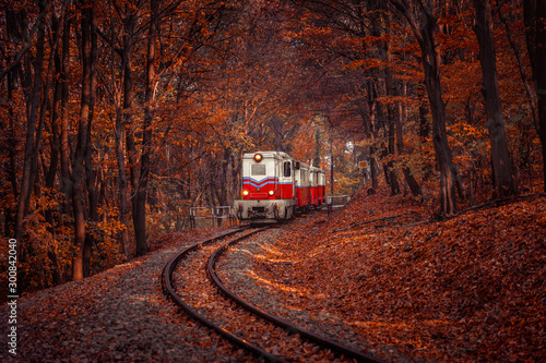 Red and white diesel train coming in the autumn forest in Budapest, beautiful colors and fallen leaves in the background. Retro style image