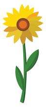 Sunflower, Illustration, Vector On White Background.