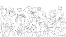 Lotus Flowers And Kingfishers, Coloring, A Black And White Vector Illustration
