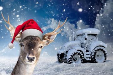 Rentier mit Nikolausmütze vor einem zugeschneiten Traktor