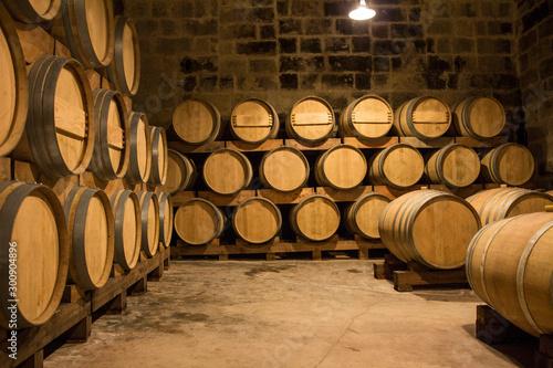 Cuadros en Lienzo Win production in a winery in Malta