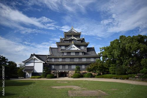 Fotografiet 岡山城にて晴天の天守閣