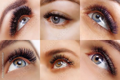 Fotografie, Obraz  Eyelash extension procedure