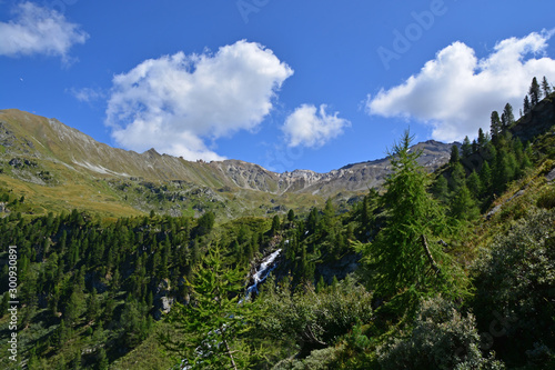 Obraz na płótnie Swiss Alps