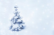 Winter background with small Christmas tree covered with snow