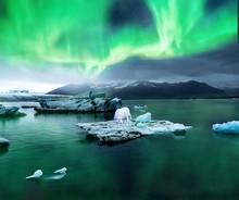 Arctic Fox On Iceberg Under Au...