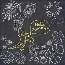 Hand Drawn Toucan Talking Hello Summer And Tropical Leaves On Chalk. Vector Illustration. Perfect For Greeting Card, Postcard, Print.