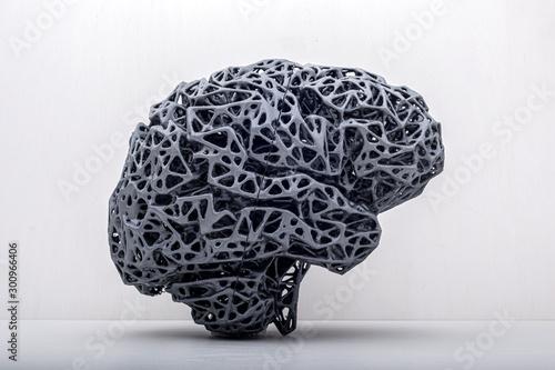Photo  konstrukcja mózgu