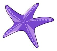 Purple Starfish On White Background