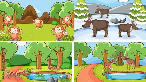Papiers peints Jeunes enfants Background scenes of animals in the wild