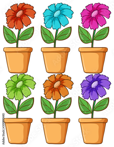 Papiers peints Jeunes enfants Isolated set of flower in different colors