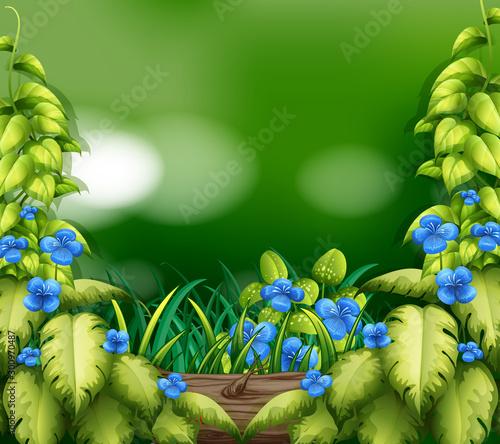 Montage in der Fensternische Kinder Background scene with nature theme