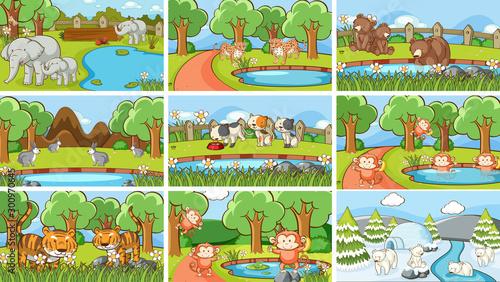 Poster Jeunes enfants Background scenes of animals in the wild