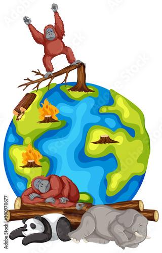 Montage in der Fensternische Kinder Animals dying on earth