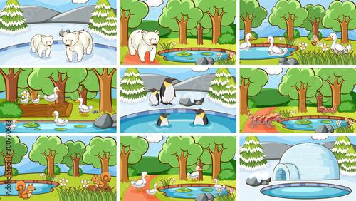 Montage in der Fensternische Kinder Background scenes of animals in the wild