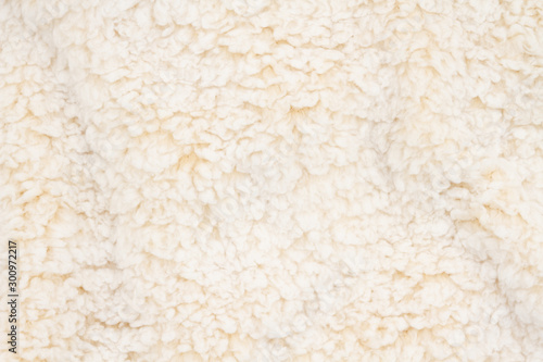 Fotografiet Beige sherpa textured plush fabric material background