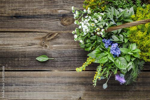 Assorted garden fresh herbs on wooden background Canvas Print