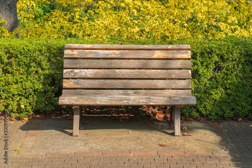 秋の日の黄色い花と木製のベンチ Wallpaper Mural