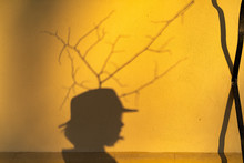 Shadow Of A Boy With Long Hair...