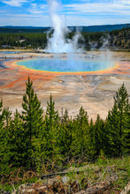 Grand Prismatic Spring In Yell...